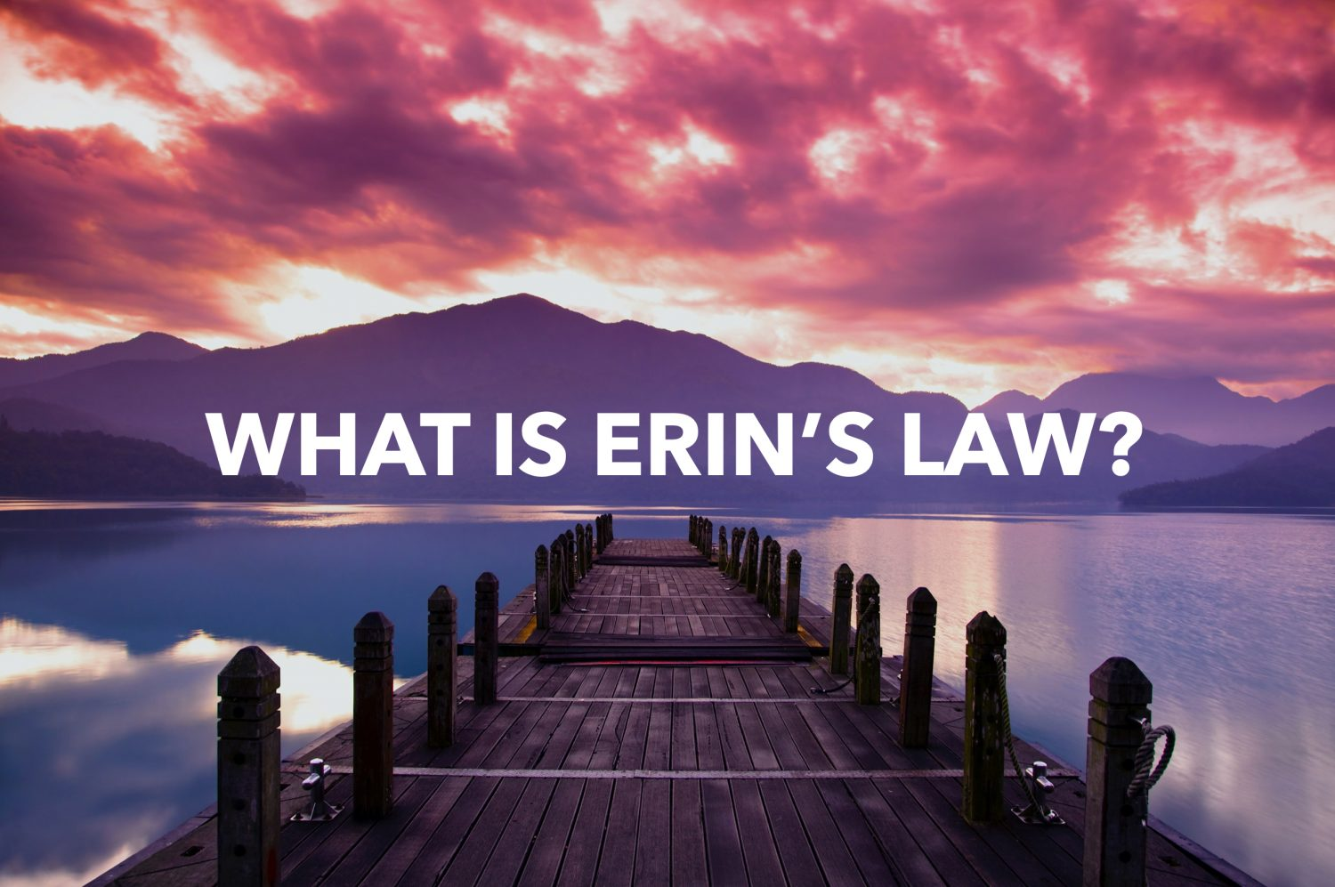 WHAT IS ERIN'S LAW?
